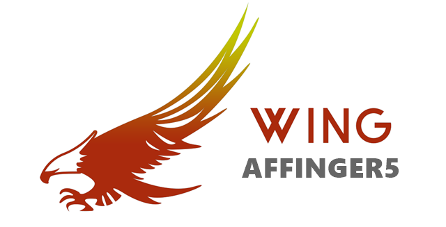 WING(アフィンガー5)AFFINGER5